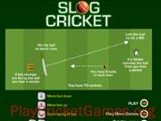 Slog Cricket
